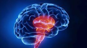 ضربه مغزی و مرگ