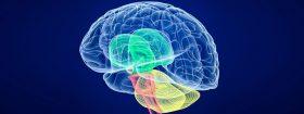 سوالات متداول درباره جراحی تومور مغزی
